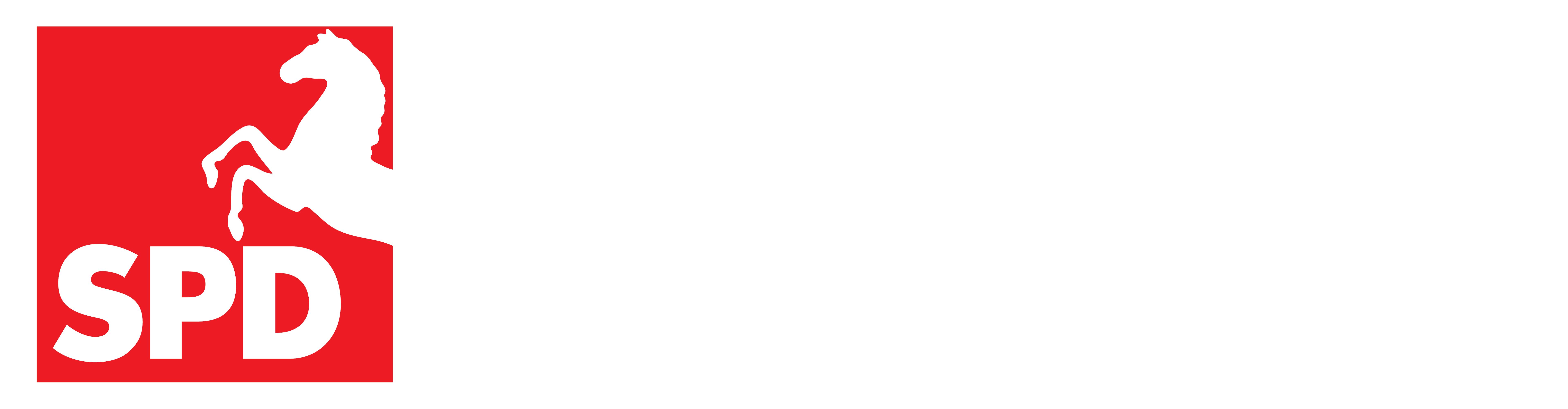 Frank Henning, MdL